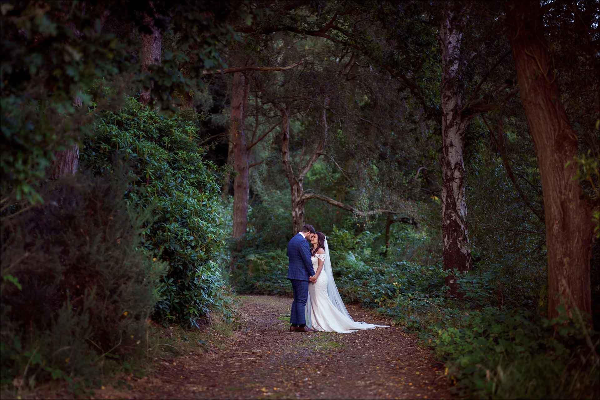 Romantic Delamere manor woodland area pic